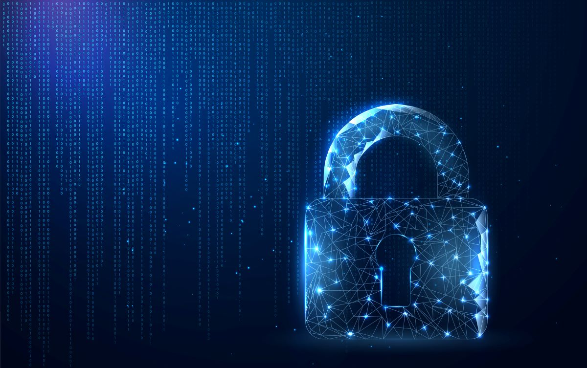 Artificial Intelligence Risks: Data Privacy and Security